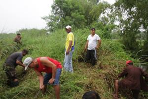 CLEAN-UP DRIVE AND TREE PLANTING  09.29.2017 (14)