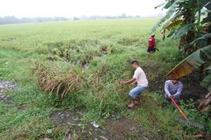 CLEAN-UP DRIVE AND TREE PLANTING  09.29.2017 (2)