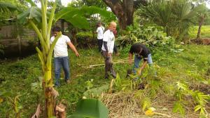 CLEAN-UP DRIVE AND TREE PLANTING  09.29.2017 (21)