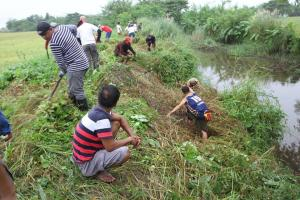 CLEAN-UP DRIVE AND TREE PLANTING  09.29.2017 (6)
