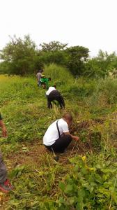 CLEAN-UP DRIVE AND TREE PLANTING  09.29.2017 (9)